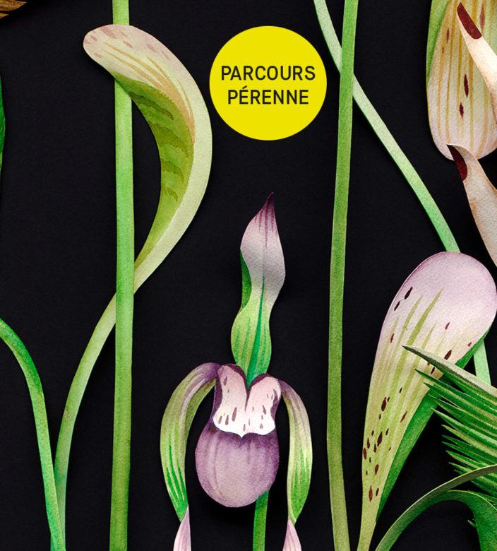 ORCHIDS_PARCOURS_HIVER2